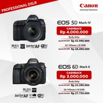 CANON EOS 5D Mark IV DSLR With EF 24 - 105 IS II USM